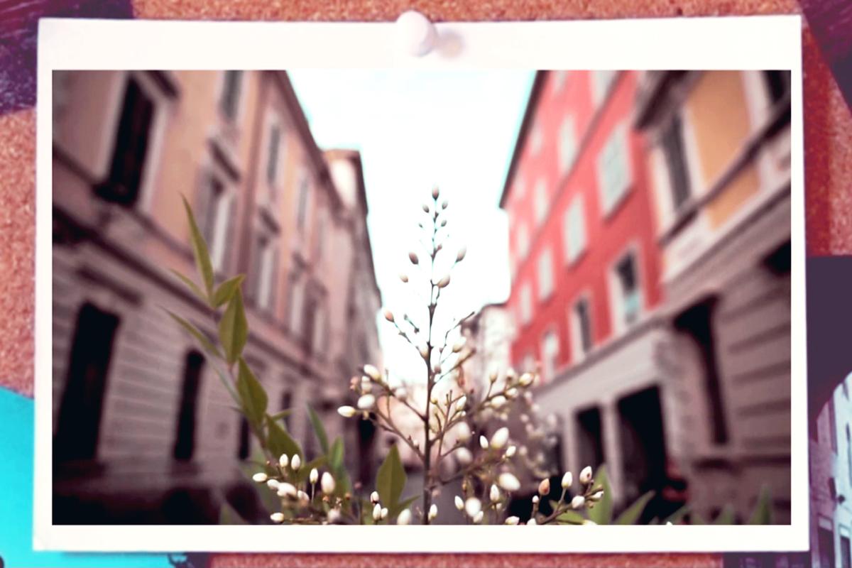 Parma, più di una fotografia – il video